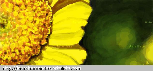 Flor amarilla Color (Digital) Naturaleza