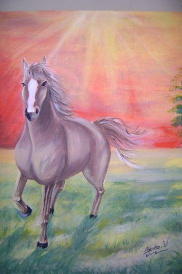 caballo salvaje en atardecer Lienzo Acrílico Paisaje