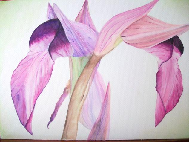 Orquideas Acuarela Floral Papel