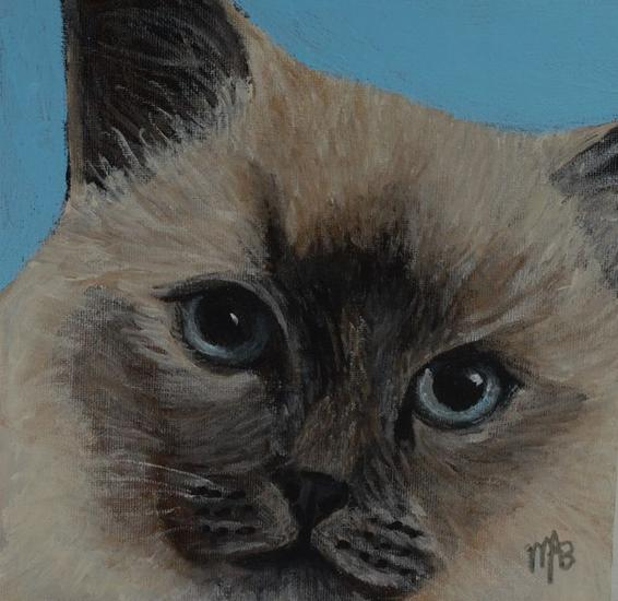 Retrato de gato Thai Lienzo Acrílico Animales