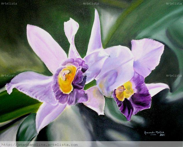 Simbiosis Floral Óleo Tela