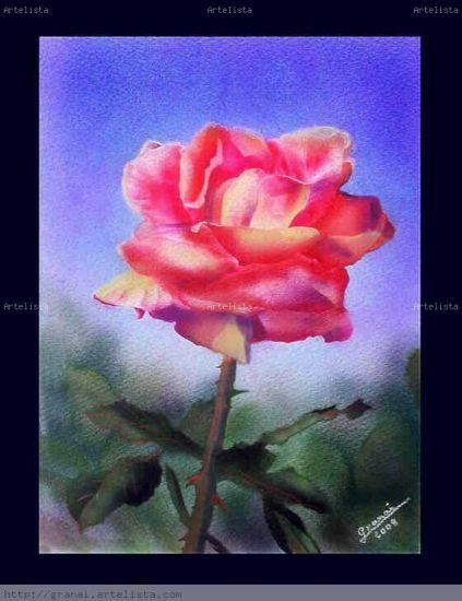 ROSA-ROSA Acuarela Papel Floral