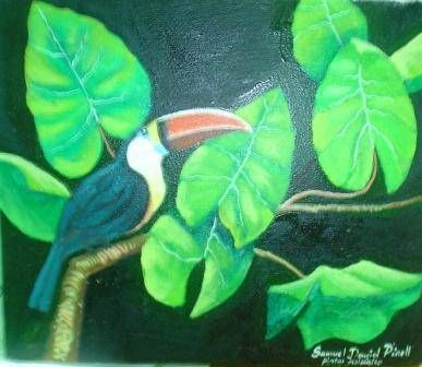 hojas y tucan