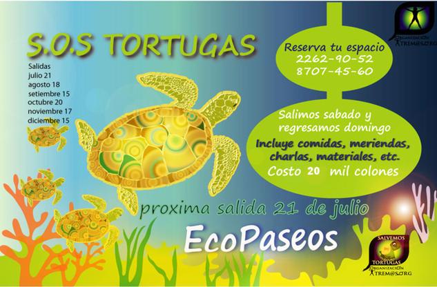 SOS TORTUGAS