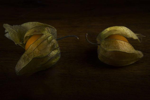 Physalis Color (Digital) Bodegones