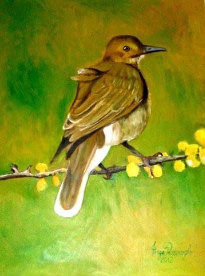 Pájaro Tabla Óleo Animales