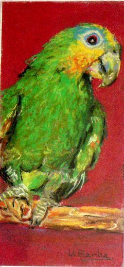 lorito Pastel Cartulina Animales