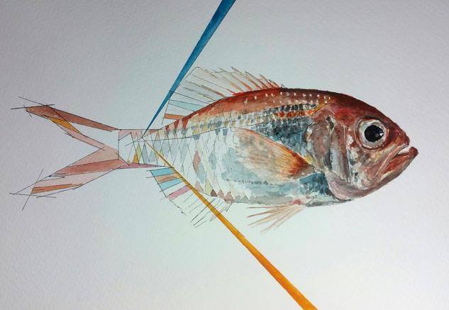 pez con líneas 2 Papel Acuarela Animales