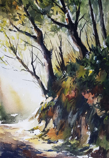camino sombrio Landscaping Watercolour Paper
