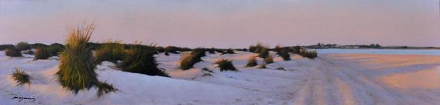 paisaje de dunas y playa de sancti petri al atardecer