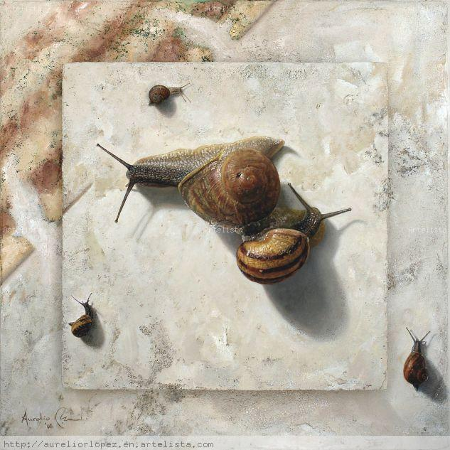 Triangle of snails Óleo Otros Bodegones
