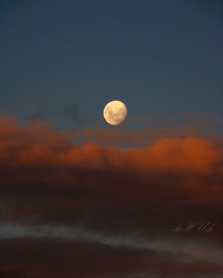 Luna Naturaleza Color (Digital)