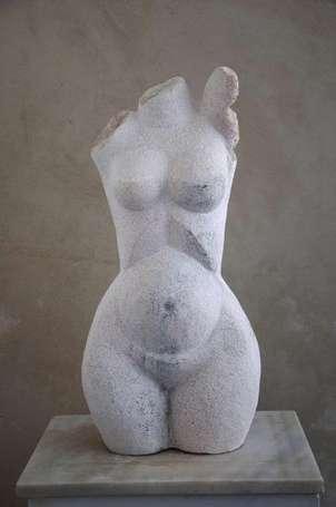 torso m
