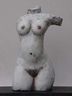 torso a