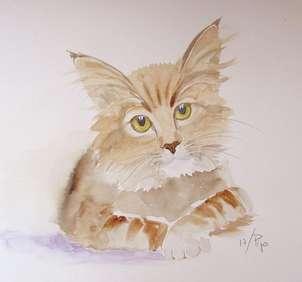 gato pensador