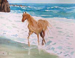 caballo en la playa 2
