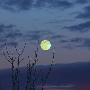 Luna de Valdemoro