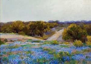 paisaje con camino bluebonnets