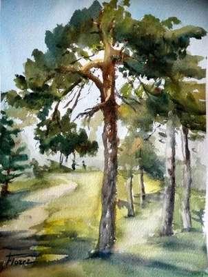 pinos en guadarrama