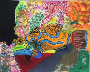 pez del coral