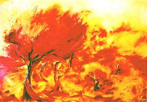 bosc de foc