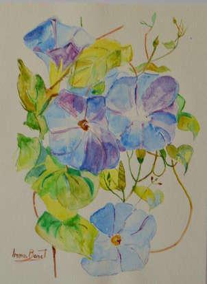 flors de maig