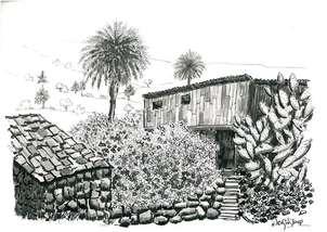 paisaje canario