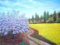 Camino primaveral