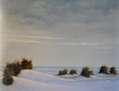 Invierno_Atardecer soleado en la dunas