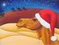 Navidad Holidays