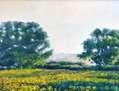 Paisaje con campos de girasoles