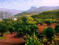 La Sierra de Tramontana