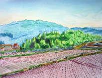 paisaje con viñedos en sant pere de ribes