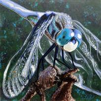 libe azul
