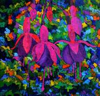 fuschia flowers