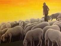 the shephard