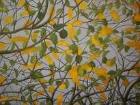 flores del nancite
