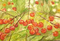 rama de cerezas