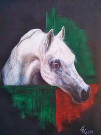caballo arabe