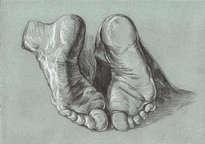pies a.durero