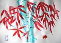 bambú 4