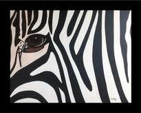 mirada de zebra