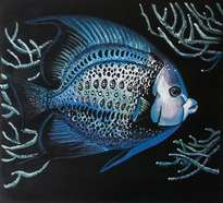 fishes, angelfish