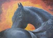 caballo negro
