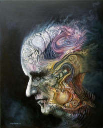 cabeza insectada