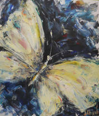 mariposa de agua