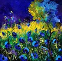 blue poppies 6641