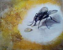 la mosca y la miel