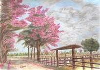 arboles de macuilí