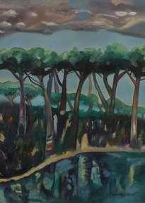 reflejos del bosque